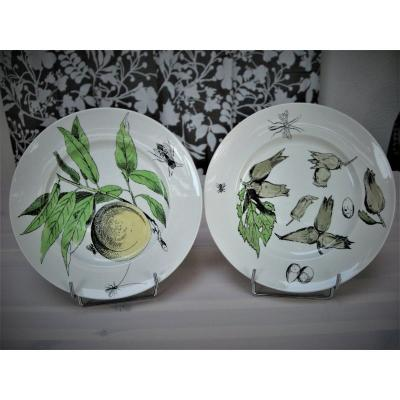 Pair Of Plates In Faience Nineteenth Fruit Service Of Creil And Montereau