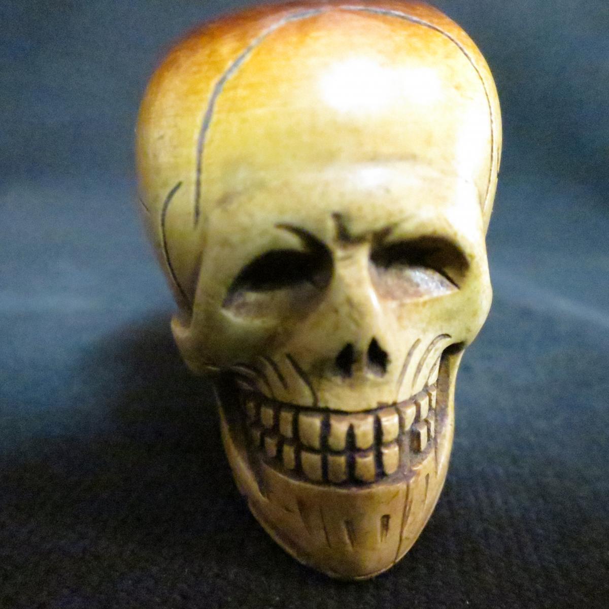 Curious Pipe Vanity Skull Skull In Foam Late Nineteenth Memento Mori