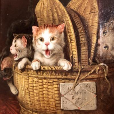 F. Watler Oil On Canvas 19th Century 3 Cats In A Basket Cat Kitten Shipped To Modena Rome Italy