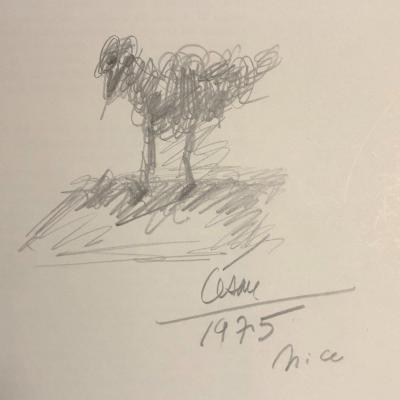 CESAR BALDACCINI 1921-1998 POULE Dessin au crayon signé daté César Ecole de Nice