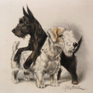 2 CHIENS FOX Lithographie signée dlg de RIC et RAC chien terrier