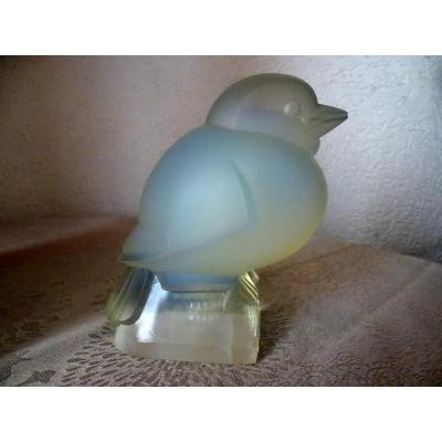 Bird Opalescent J.martel