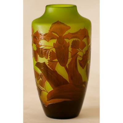 Paul Nicolas.d'argental.vase.orchidas / Venus Hoof.capillary / Venus Hair.h 20cm