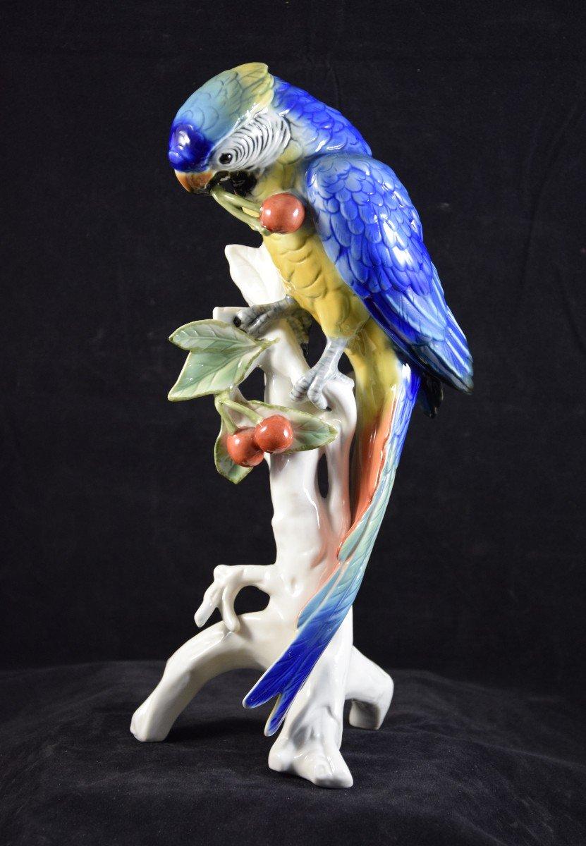 Perroquet aux cerises ,porcelaine de la manufacture  Karl Ens ,Saxe, Thuringe, Allemagne