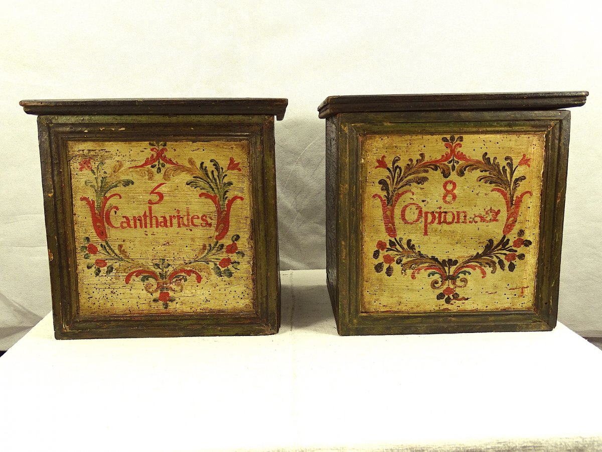 Two Boxes Of Herbalist Or Apothecary From The End Of The 17th Century