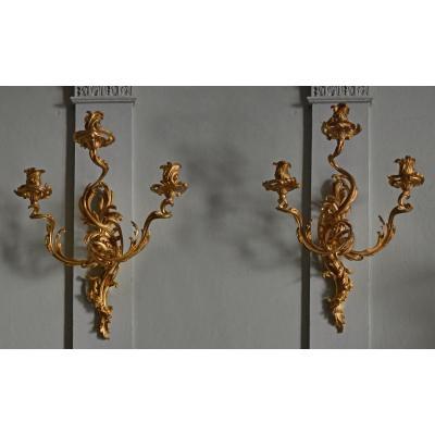 Grande Paire d'Appliques De Style Louis XV