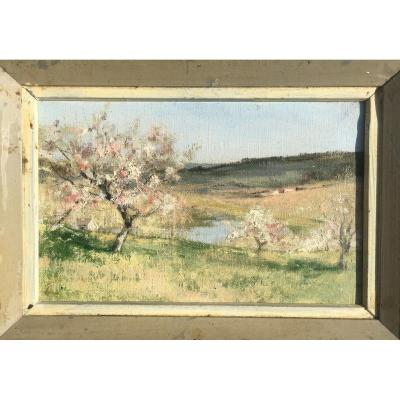 """""""Pommiers en Fleurs"""" par J.A.CLAIRE, Normandie, ORNE,1930"""