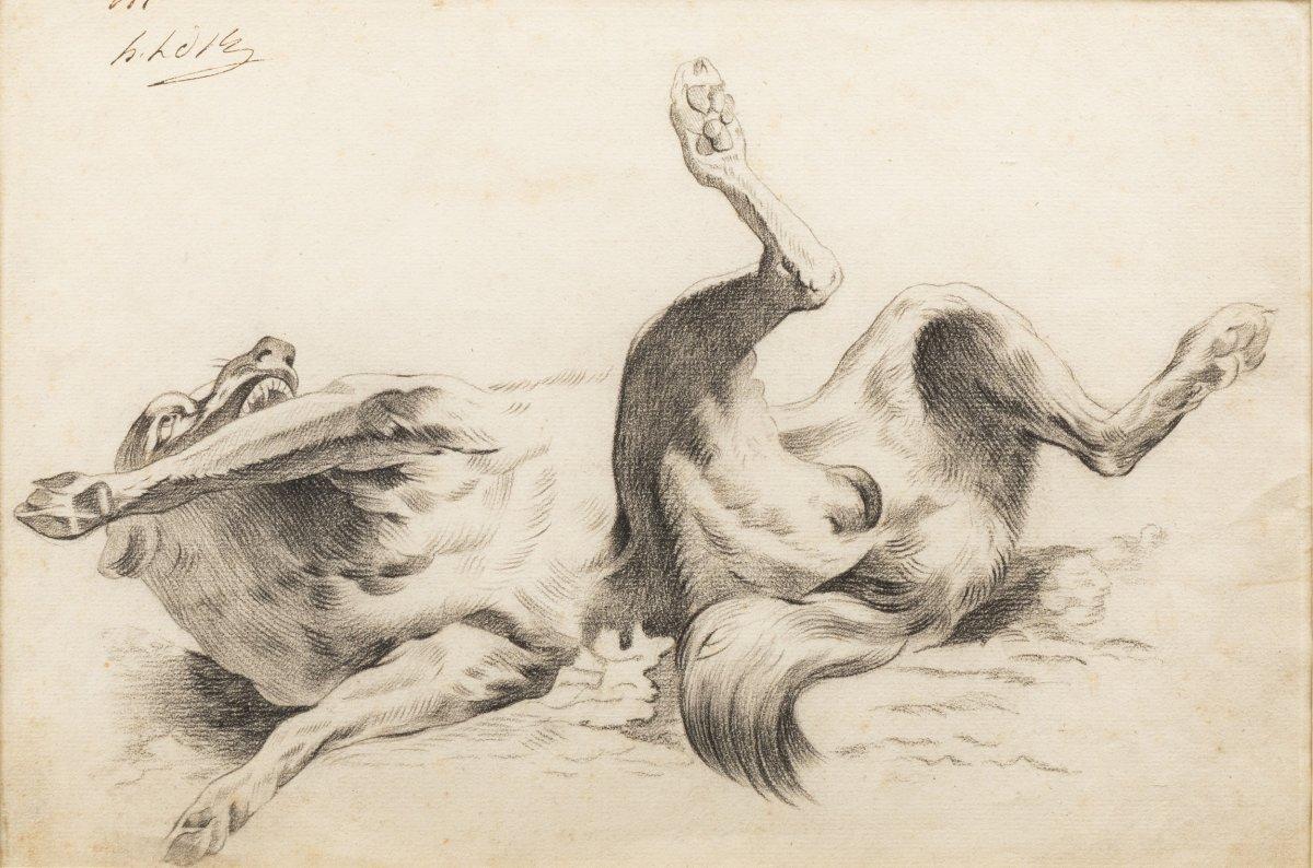 Chien se roulant sur le dos – entourage d'Alexandre-François Desportes.