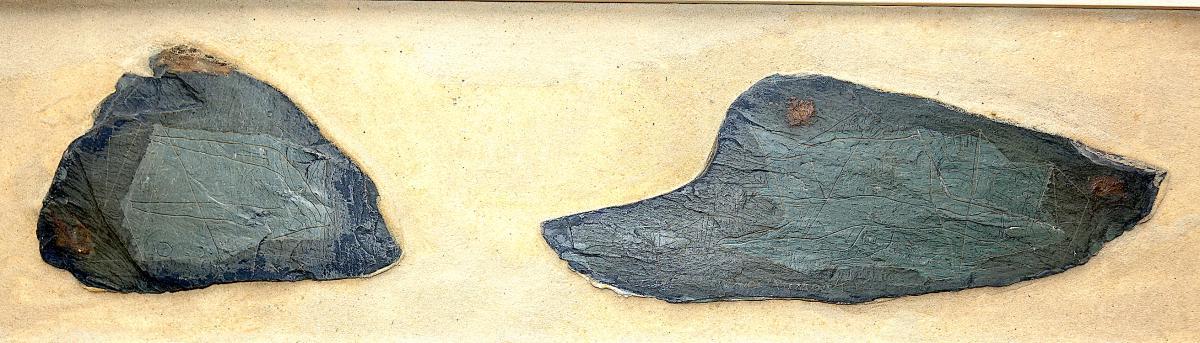 Max Papart Engraved Slats
