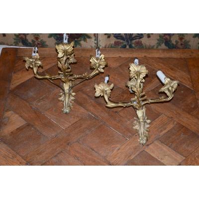 Paire d'Appliques En Bronze Doré époque Napoléon III