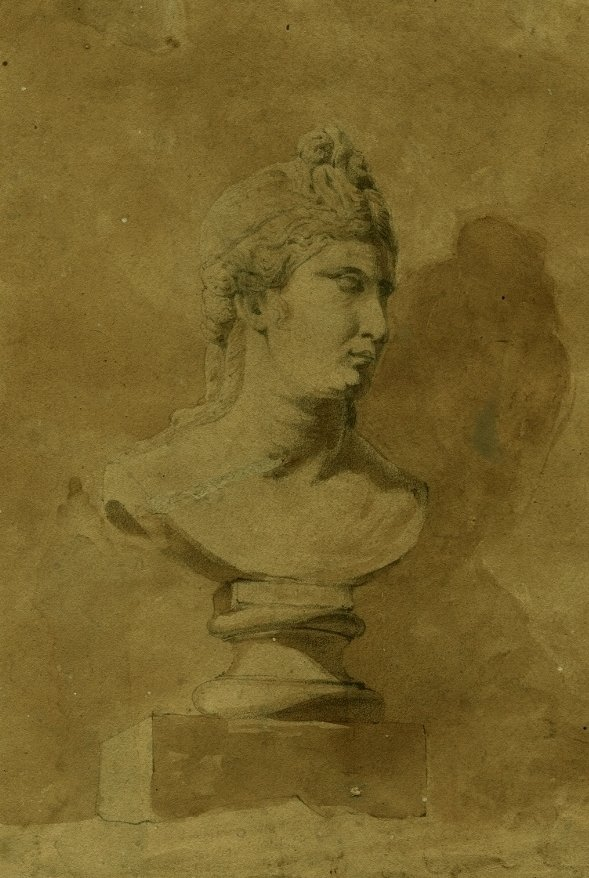 Bust Of Woman - Old Drawing In Pencil And Lavis