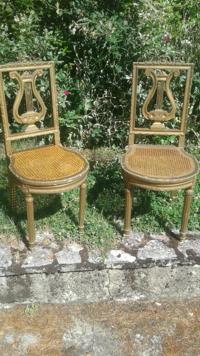 Paire De Chaise A Musique style louis xvi, d'epoque  Napoleon III