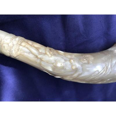Corne Sculpté