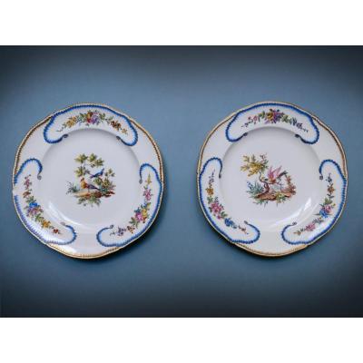 Sèvres - Paire d'Assiettes En Porcelaine Dure XXe Siècle