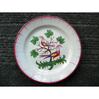 Les Islettes XIXth Earthenware Plate With Parakeet Decor