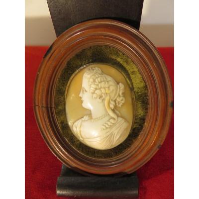 Camé  à suspendre ,  présenté dans un médaillon en bois  , XIX ème