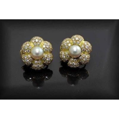 Boucles Or - Perle De Culture - Diamants