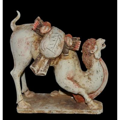 Grand chameau bâté - Chine, Dynastie Tang - Archéologie