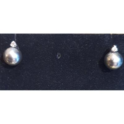 18ct White Gold Earrings, Set With 2 Gray Cultured Pearls And 2 Brilliants