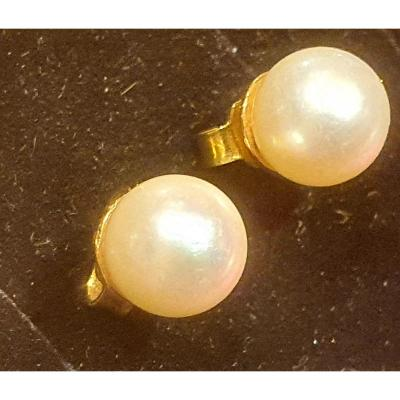 Boucles d'Oreille En Or 18ct Serties Perles De Cultures