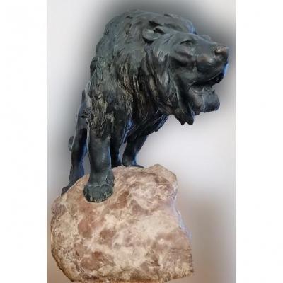 Lion Rugissant (bronze  De P. Lecourtier 1851-1924)