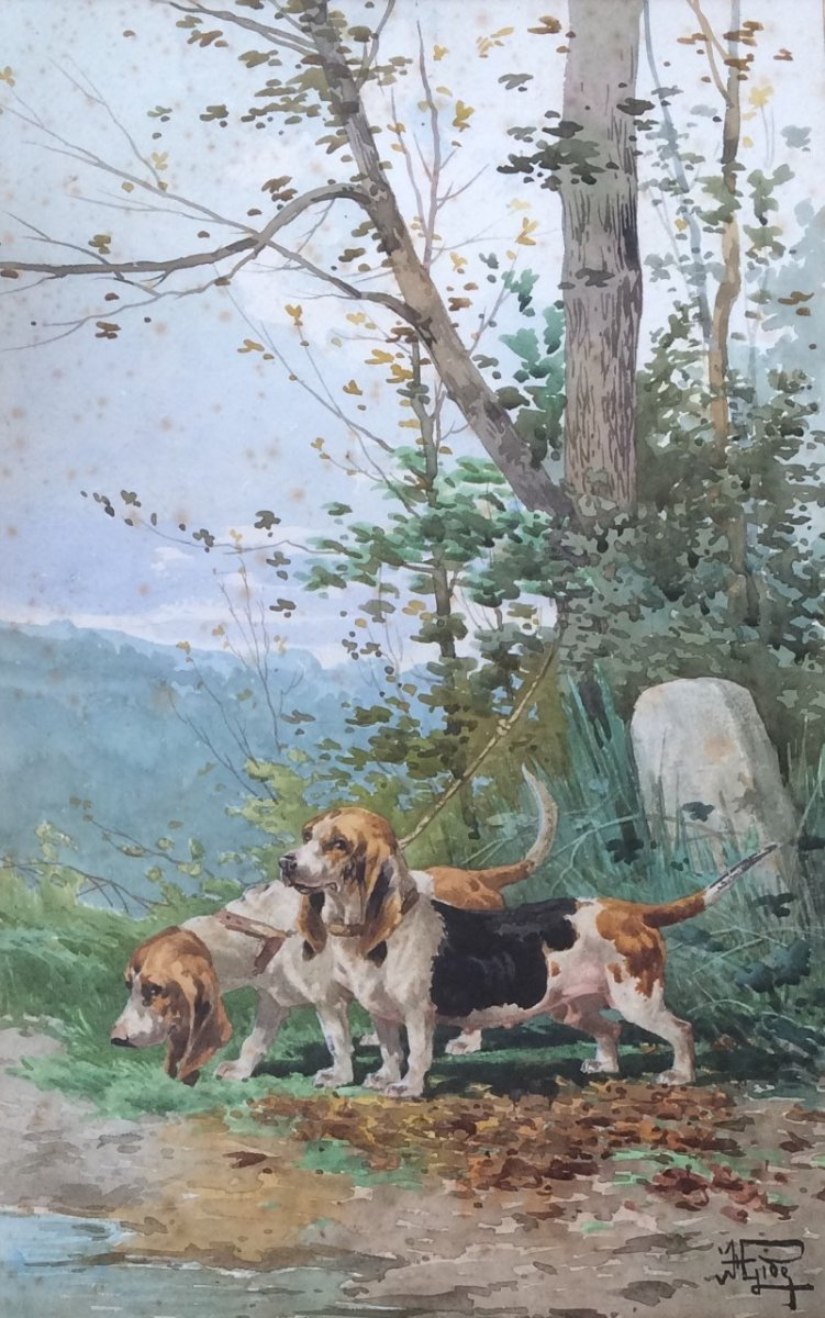 Hippolyte Gide, Chiens De Chasse