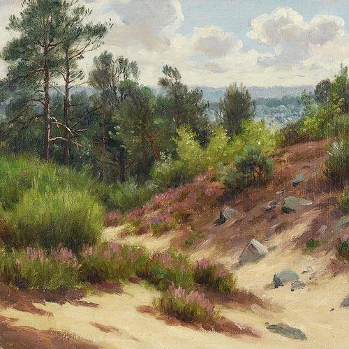 Georges Frédéric Rotig, Landscape-photo-2