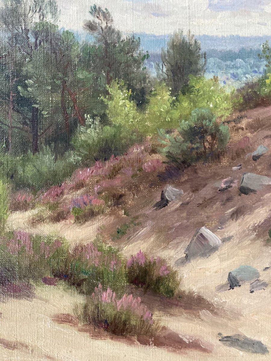 Georges Frédéric Rotig, Landscape-photo-4