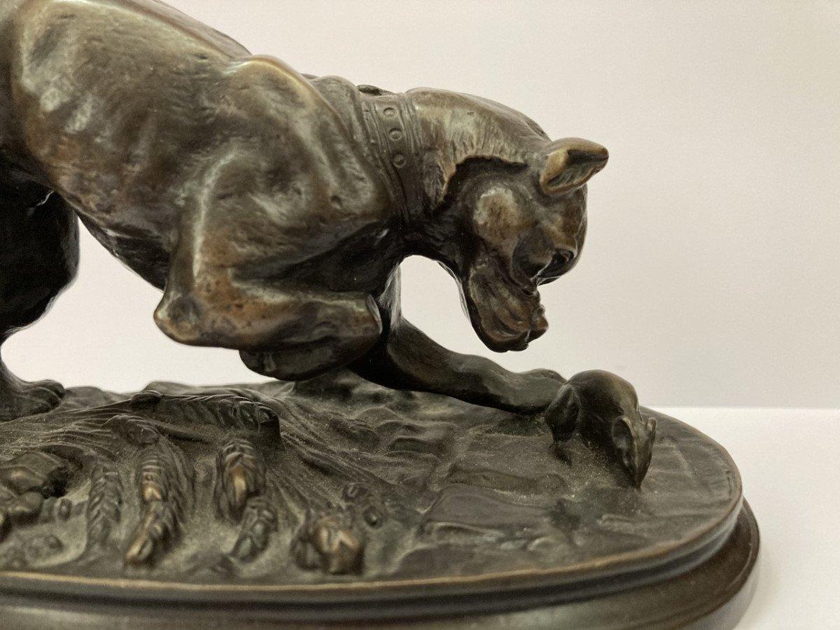 Adrien Trodoux, Hunting Dog-photo-2