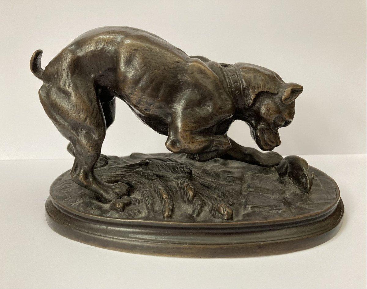 Adrien Trodoux, Hunting Dog