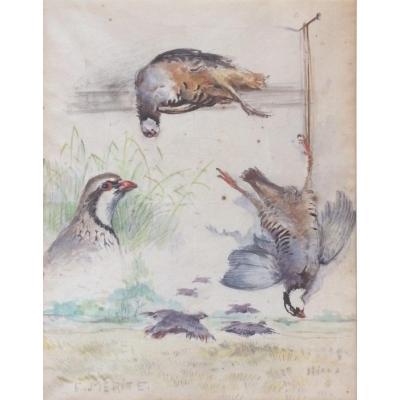 Edouard Mérite, Studies Of Partridge