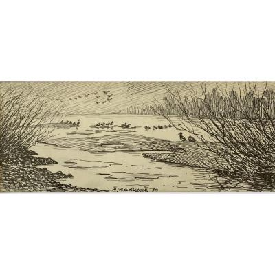 Alfred Andrieux, Ducks