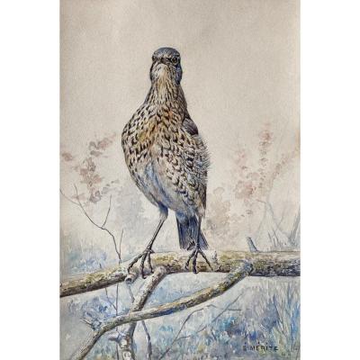 Edouard Mérite, Oiseau