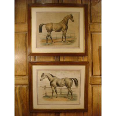 Pair Of Large Engravings With Horses Victor Adam