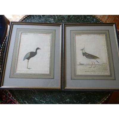 Pair Of Gouache Old Rep Des Waders.