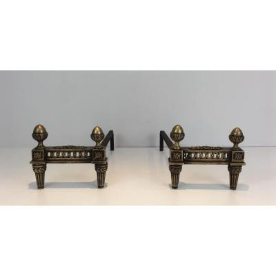 Pair Of Louis XVI Andirons In Bronze And Wrought Iron. La France.