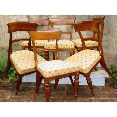 Suite Of 6 Large English Mahogany Chairs William IV From The 19th Century