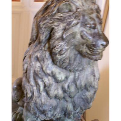 Importante Sculpture De   Lion  Assis    En  Bronze   H:128 Cm  #3:5   Par  Christian   Maas  .
