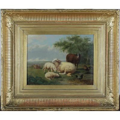 Animal Painting, Sheep And Barnyard, XIXth, 186 ..., Signed To Identify