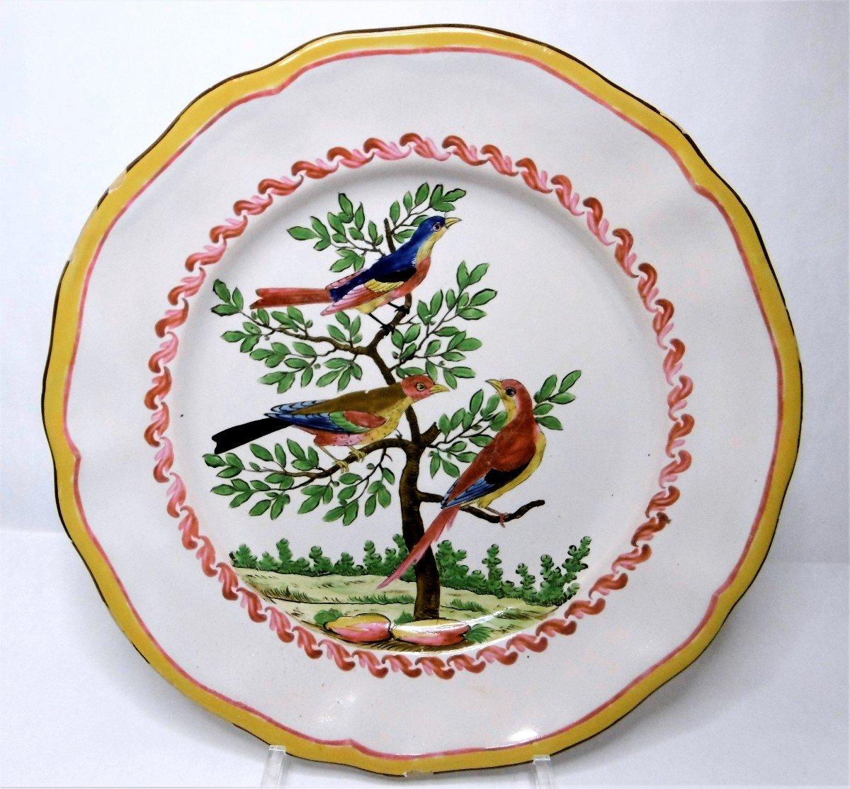 Les Islettes Periode Dupre Plat Aux Oiseaux Imaginaires d'Epoque XVIIIéme Siecle