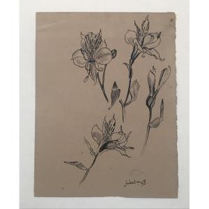Georges Lemmen (1865-1916) Fleurs De Lys, Encre Sur Papier