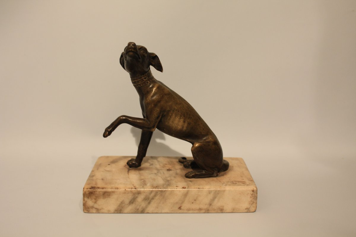Bronze Sculpture Representing A Greyhound Greyhound Late Eighteenth Beginning XIXth Century