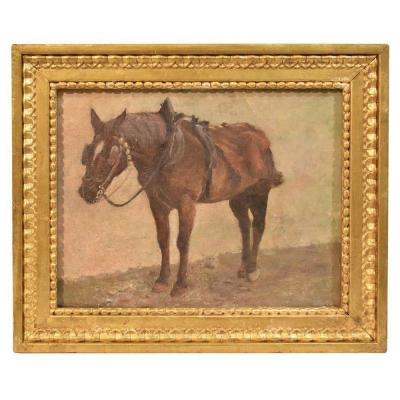 Peinture cheval , huile sur toile,  XIXè siècle . (QA 224)