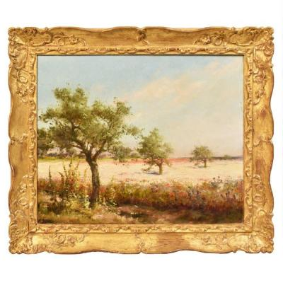 Beautiful Park Painting, Flower Paintings, Oil Painting Landscape, 20th Century. (qp 212)