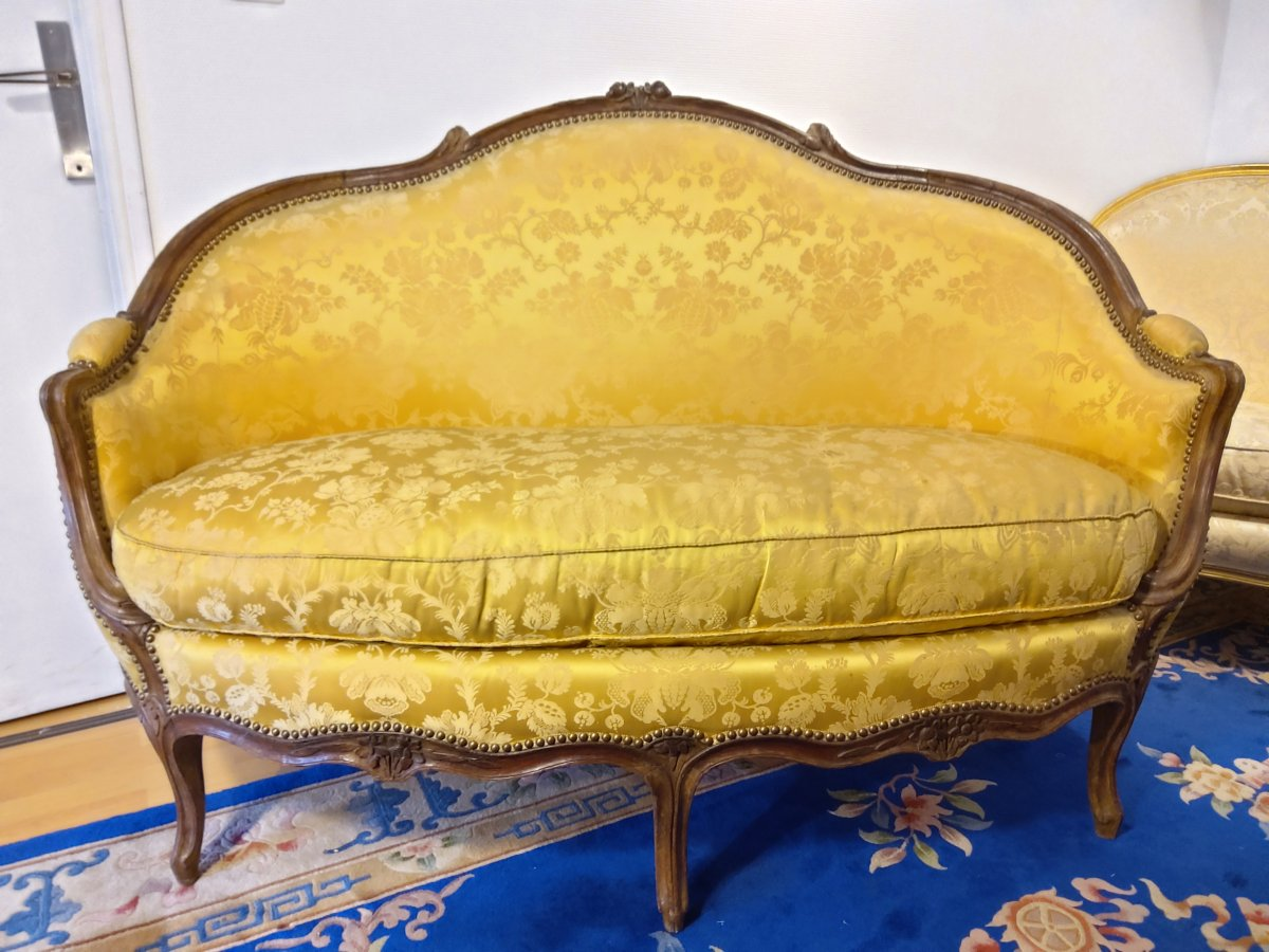 Sofa Trash D Louis XV