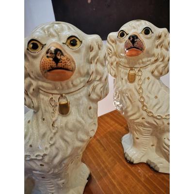 Pair Of Dogs