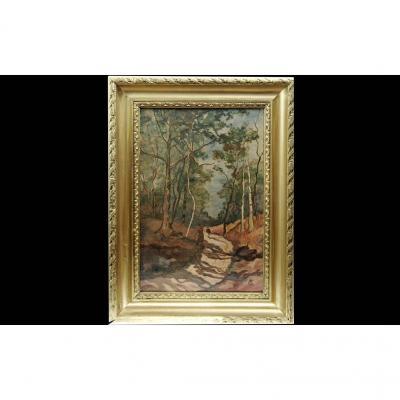 Oil On Marouflée Canvas, Forest Landscape