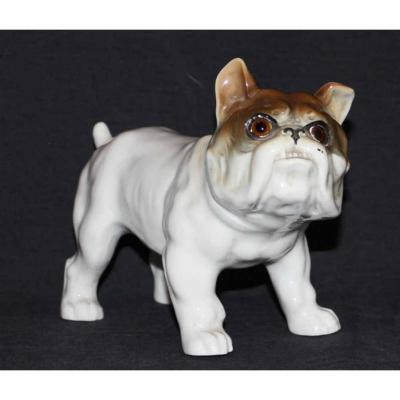 Porcelaine Italienne Bulldogue