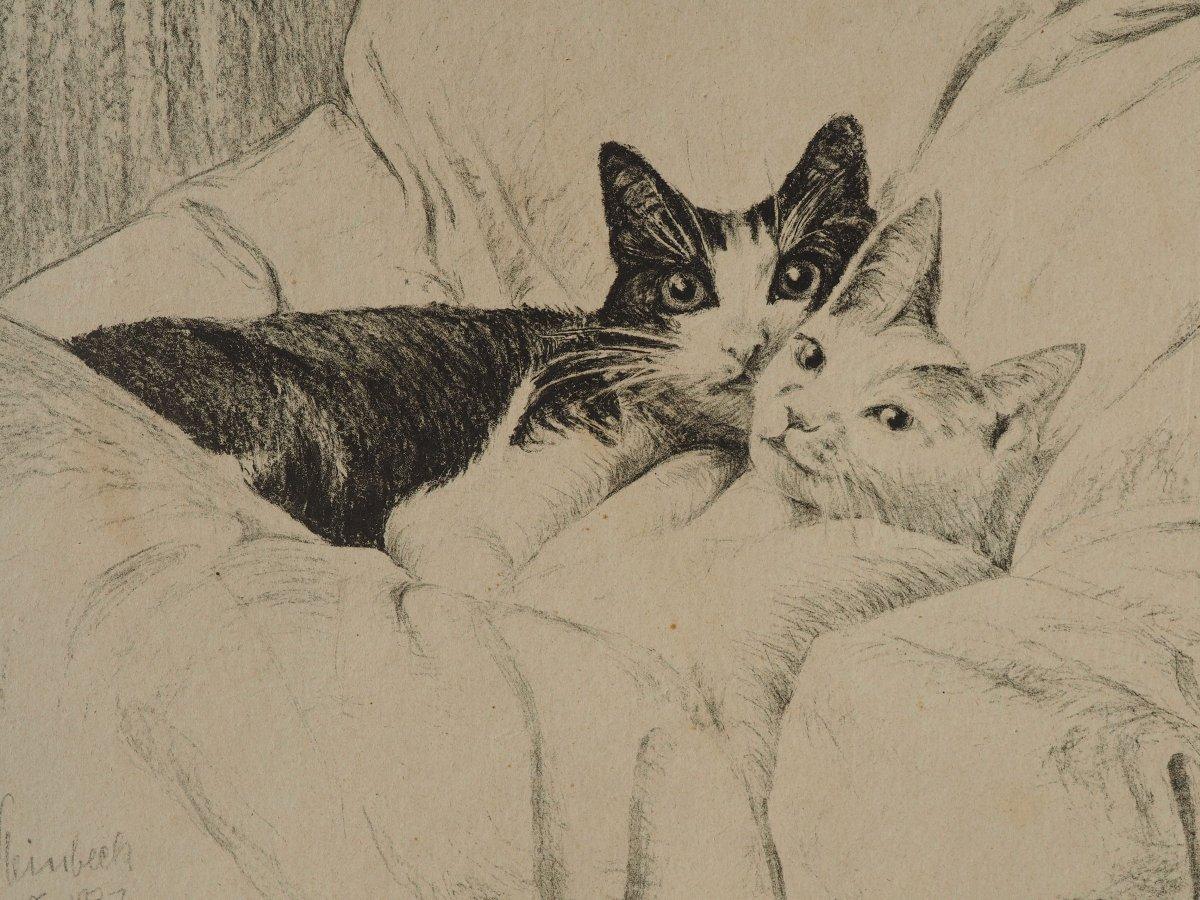 Steinbeck Albert, 1931, Cats-photo-3
