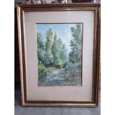 Watercolor Wooded Path Signed S. Bertrand